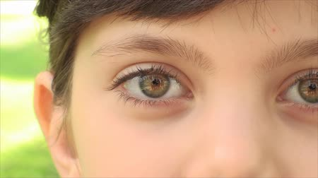 olhos verdes : Beautiful Little Girl Eyes Looking At The Camera, Iris, Close Up, Eyebrows, Pan