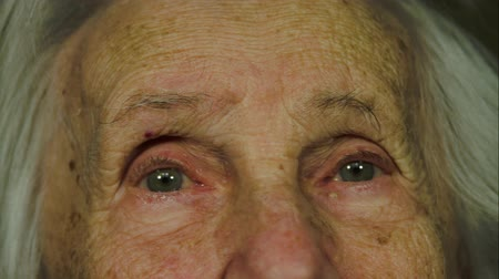 strong granny : Close Up Of A 99 Years Old Woman Looking At The Camera, Portrait