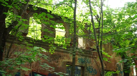 zarostlý : Destroyed building in forest with arches