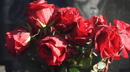 bud rose : Bouquet of dried red roses