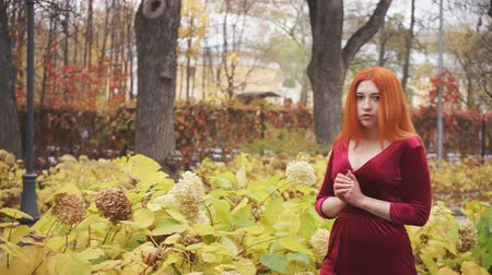 sexualita : Pensive young girl walks through the autumn park Dostupné videozáznamy