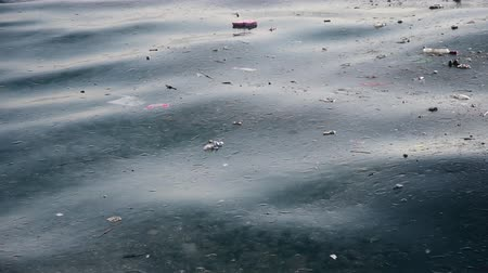 sujo : Sea pollution and jelly fishes on surface of wavy sea water Vídeos