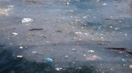 környezeti : Sea pollution and jelly fishes on surface of wavy sea water Stock mozgókép