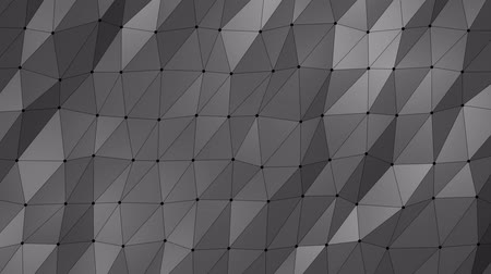 szürkeárnyalatos : Grayscale low poly abstract animated background with black lines and dots Stock mozgókép