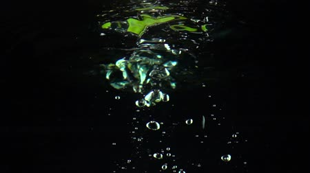 calcário : Two lime slices fall under water super slow motion shot. Black background Stock Footage