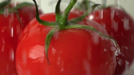 cooks : Super slow motion shot of water splashes on red ripe tomato with green leaves