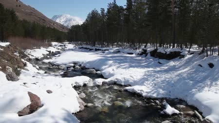 winter place : Winter river in the forest