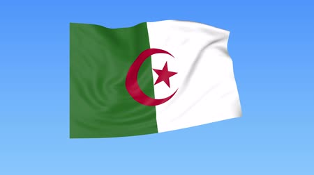 доля : Waving flag of Algeria, seamless loop. Exact size, blue background. Part of all countries set. 4K ProRes with alpha.