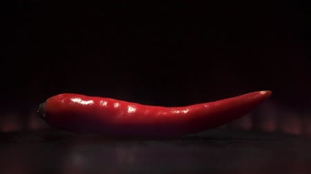 biber : Single red hot pepper and red flame. Close up video