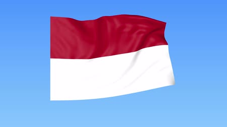 unify : Waving flag of Indonesia, seamless loop. Exact size, blue background. Part of all countries set. 4K ProRes with alpha. Stock Footage