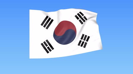 unify : Waving flag of South Korea, seamless loop. Exact size, blue background. Part of all countries set. 4K ProRes with alpha. Stock Footage