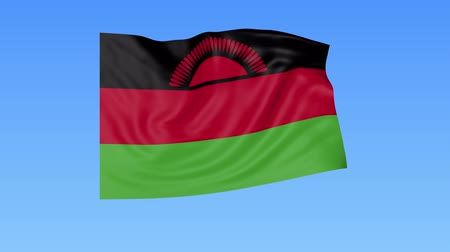 malawi : Waving flag of Malawi, seamless loop. Exact size, blue background. Part of all countries set. 4K ProRes with alpha.