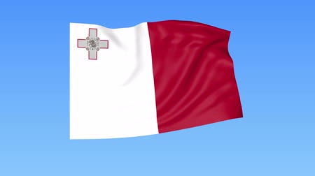доля : Waving flag of Malta, seamless loop. Exact size, blue background. Part of all countries set. 4K ProRes with alpha.