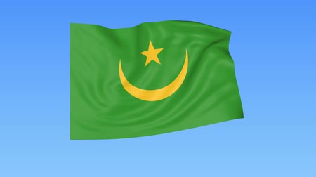 мавританский : Waving flag of Mauritania, seamless loop. Exact size, blue background. Part of all countries set. 4K ProRes with alpha.