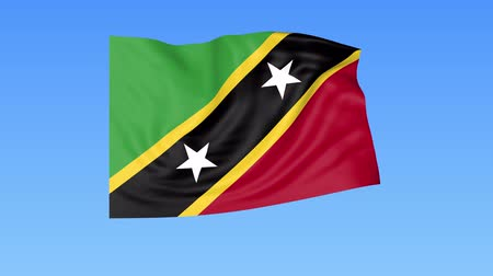 доля : Waving flag of Saint Kitts and Nevis, seamless loop. Exact size, blue background. Part of all countries set. 4K