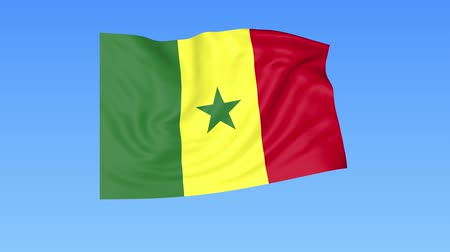 unify : Waving flag of Senegal, seamless loop. Exact size, blue background. Part of all countries set. 4K ProRes with alpha.