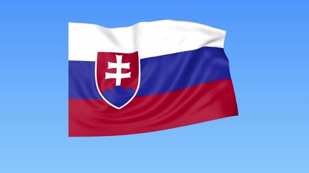 доля : Waving flag of Slovakia, seamless loop. Exact size, blue background. Part of all countries set. 4K ProRes with alpha