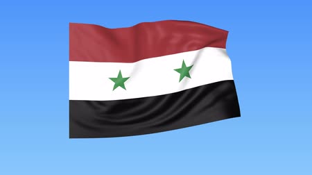 unify : Waving flag of Syria, seamless loop. Exact size, blue background. Part of all countries set. 4K ProRes with alpha