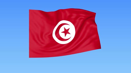 доля : Waving flag of Tunisia, seamless loop. Exact size, blue background. Part of all countries set. 4K ProRes with alpha Стоковые видеозаписи