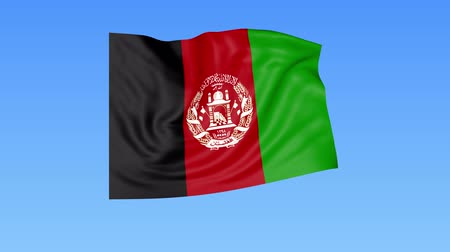 доля : Waving flag of Afghanistan, seamless loop. Exact size, blue background. Part of all countries set. 4K ProRes with alpha