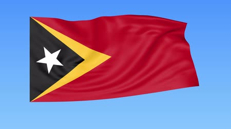 east timor : Waving flag of East Timor, seamless loop. Exact size, blue background. Part of all countries set. 4K ProRes with alpha