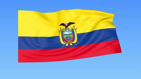 доля : Waving flag of Ecuador, seamless loop. Exact size, blue background. Part of all countries set. 4K ProRes with alpha Стоковые видеозаписи