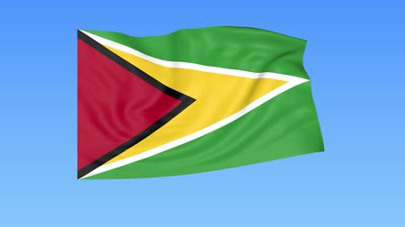 unify : Waving flag of Guyana, seamless loop. Exact size, blue background. Part of all countries set. 4K ProRes with alpha
