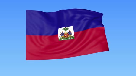 доля : Waving flag of Haiti, seamless loop. Exact size, blue background. Part of all countries set. 4K ProRes with alpha