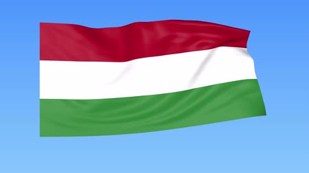 доля : Waving flag of Hungary, seamless loop. Exact size, blue background. Part of all countries set. 4K ProRes with alpha