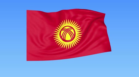 tényleges : Waving flag of Kyrgyzstan, seamless loop. Exact size, blue background. Part of all countries set. 4K ProRes with alpha Stock mozgókép