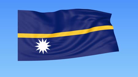 доля : Waving flag of Nauru, seamless loop. Exact size, blue background. Part of all countries set. 4K ProRes with alpha