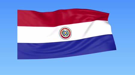 unify : Waving flag of Paraguay, seamless loop. Exact size, blue background. Part of all countries set. 4K ProRes with alpha Stock Footage