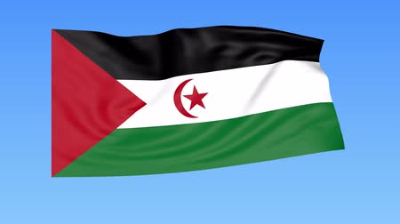 интегрированный : Waving flag of Sahrawi Arab Democratic Republic, seamless loop. Exact size, blue background. Part of all countries set