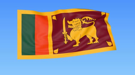 unify : Waving flag of Sri Lanka, seamless loop. Exact size, blue background. Part of all countries set. 4K ProRes with alpha Stock Footage