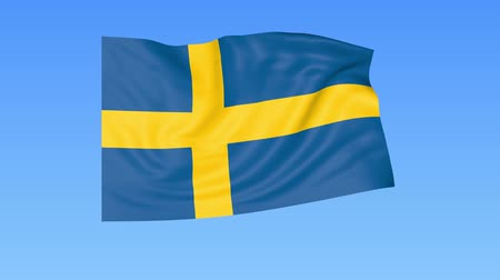 unify : Waving flag of Sweden, seamless loop. Exact size, blue background. Part of all countries set. 4K ProRes with alpha