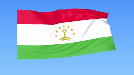 unify : Waving flag of Tajikistan, seamless loop. Exact size, blue background. Part of all countries set. 4K ProRes with alpha