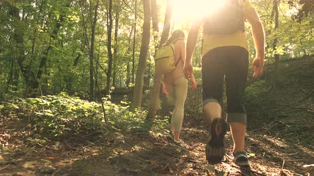 hátizsákkal : Couple hiking near stream in sunny summer forest. 4K tracking steadicam shot