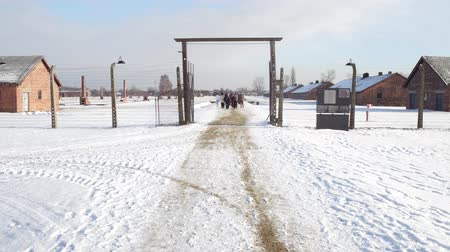 vezetett : OSWIENCIM, POLAND - JANUARY, 14, 2017 Guided tour to Auschwitz Birkenau, German Nazi concentration and extermination camp. Stock mozgókép