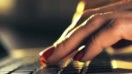 jovem : Beautiful female hands typing on laptop keyboard. 4K shallow focus close-up shot