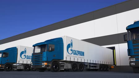 gazprom : Freight semi trucks with Gazprom logo loading or unloading at warehouse dock, seamless loop.