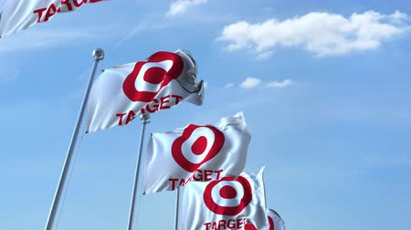 eixo : Waving flags with Target logo against sky, seamless loop. Stock Footage