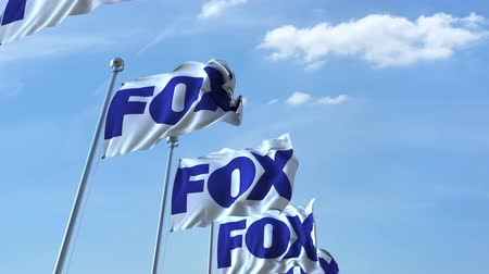 eixo : Waving flags with Fox logo against sky, seamless loop. Stock Footage