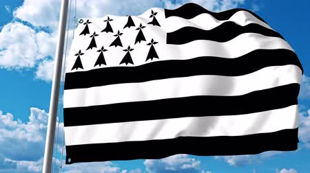 breizh : Waving flag of Brittany, a region of France