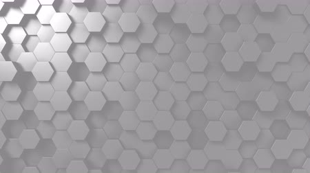 monocromático : Abstract light gray hexagonal motion background, seamless loop