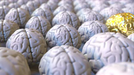 prominent : Brain made of gold among the ordinary ones. Genius, mastermind, talent or education conceptual animation