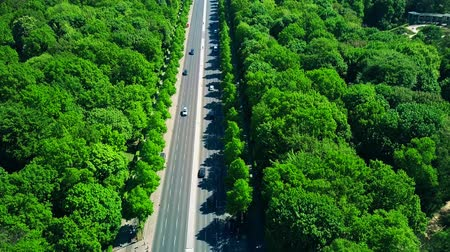 forestal : Aerial view of forest highway traffic