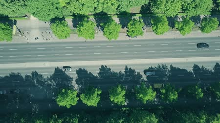 forestal : Aerial top down view of road traffic