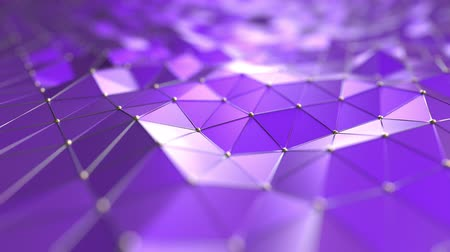polido : Purple polygonal motion background. Seamless loop