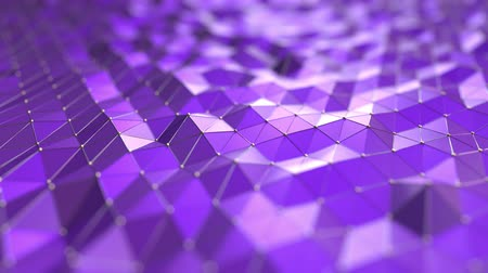 polido : Purple polygonal waves. Loopable motion background