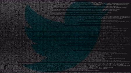 logotyp : Twitter logo made of source code on computer screen. Editorial loopable animation Wideo